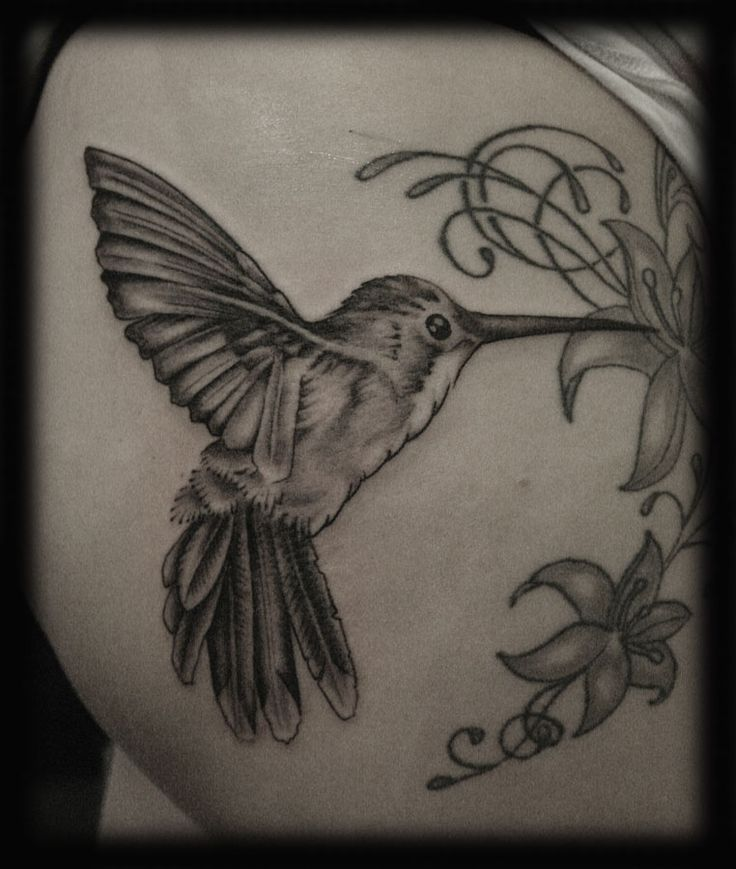 best 25 hummingbird tattoo black ideas on pinterest hummingbird tattoo hummingbird drawing. Black Bedroom Furniture Sets. Home Design Ideas