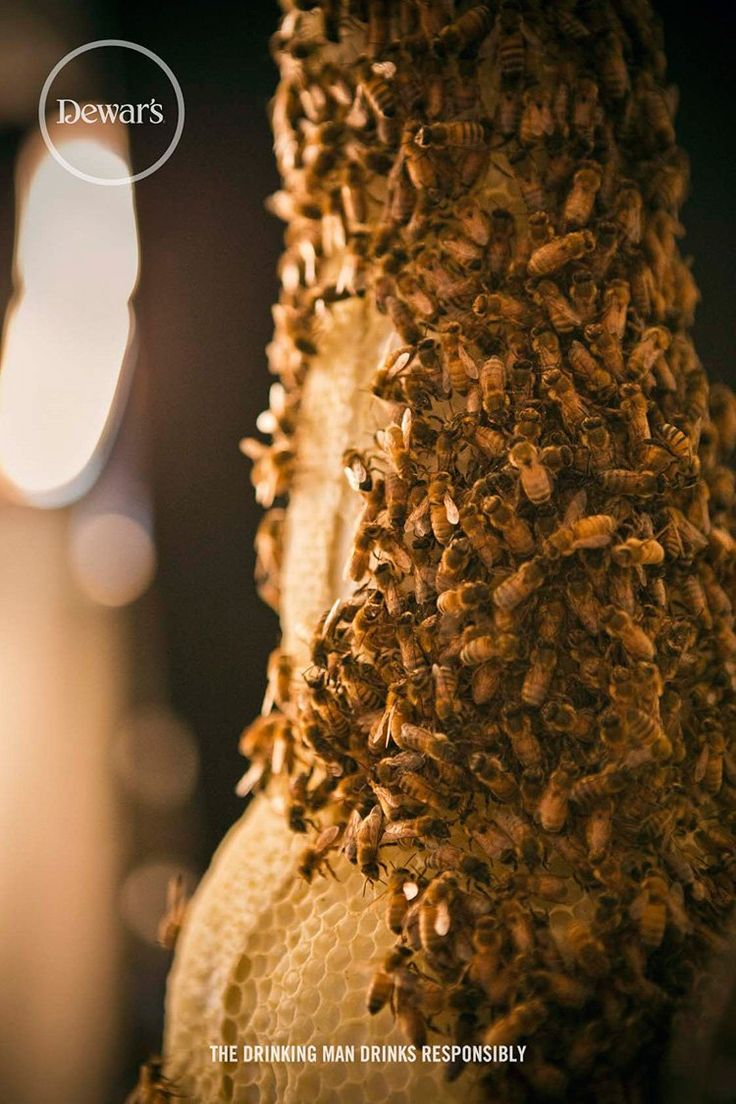 Dewar's Honey Whisky Creates Viral Buzz