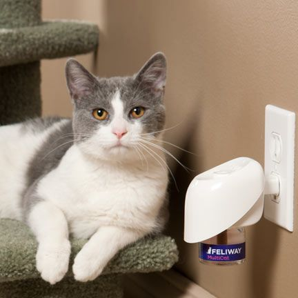Feliway Cat Diffuser Pets At Home