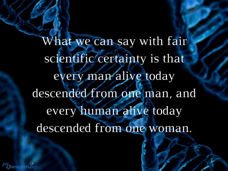 """Geneticists discovered a """"Y-chromosomal Adam"""" and """"Mitochondrial Eve."""" What exactly does this mean? That regardless of if the two people are Adam and Eve or not,the genetics demonstrate common ancestry from one man and one woman. They were also not apes."""