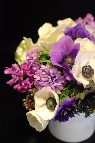 Anemones, hyacinth, viburnum berries, and decorative kale. OH MY WORD, I LOOOOOOVE THIS ARRANGEMENT!!!!!!!!!!!!    Find stuff you'll love from small shops and retailers all around you as you walk around the city with Elephanti guiding you on your smartphone!   Get discounts of 10-40% & perks when you check in.   Discover 450,000+ beautiful things in 800+ stores, restaurants, grocers, galleries and hotels in San Francisco.  Download free: www.elephanti.com