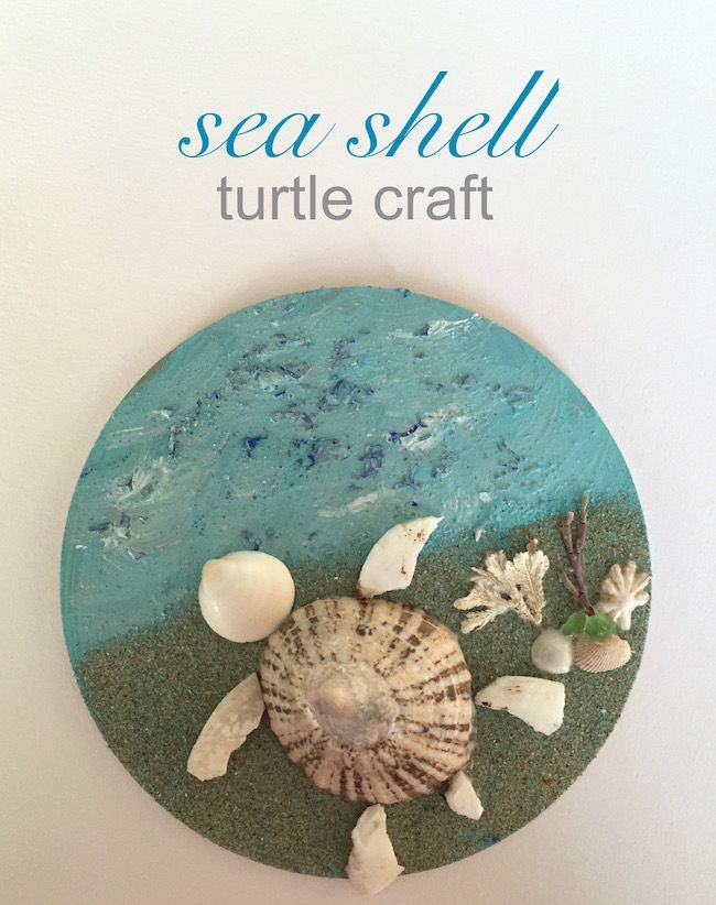 The Happy Home: Sea shell turtle craft
