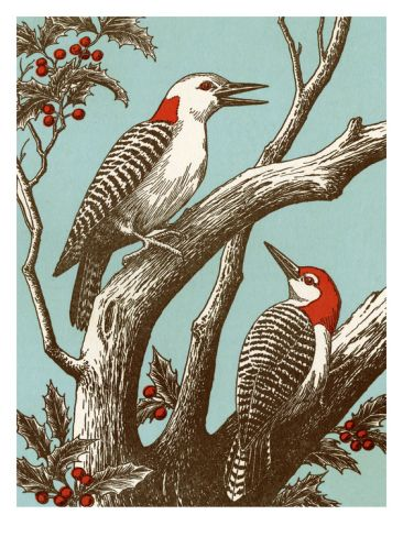 Woodpeckers Dining Room ArtRetro