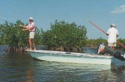 We offer Cozumel's world-class bonefishing trips, starting at just $250.00 All-Inclusive!  See More Details at:  Cozumel Charters http://www.fishingcozumel.net/fly-fishing.htm