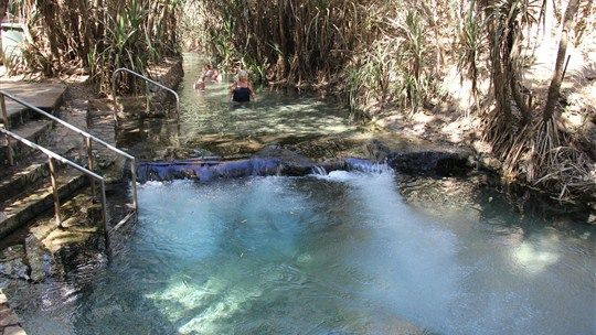 Take a refreshing dip in Katherine Hot Springs. These natural thermal springs are situated on the banks of the Katherine River, within the Katherine township. Northern Territory Australia
