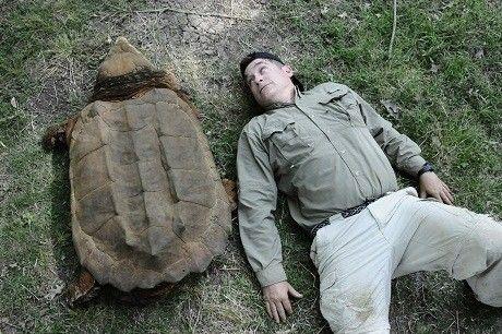 Alligator gar vs alligator snapping turtle