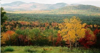 Bethel Maine Fall Foliage - Photo courtesy of Bethel Area Chamber of Commerce.