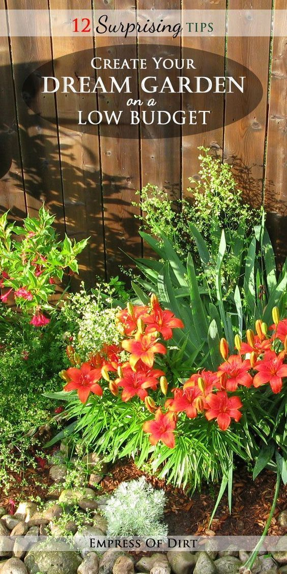 12 Surprising Tips: Create Your Dream Garden on a Low ...