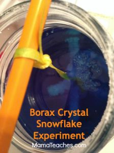 1000 ideas about borax experiments on pinterest you youtube borax crystals and pipe cleaners. Black Bedroom Furniture Sets. Home Design Ideas
