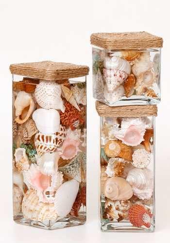 Shells Displayed in Glass Jars. I like this look, very clean looking. #seashells #display #decor