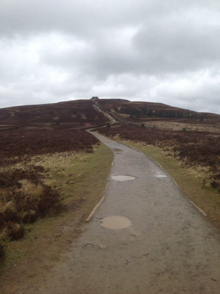 Moel Fammau, so lucky to have this on my doorstep.