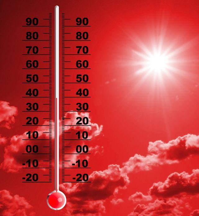 Pic de chaleur : Alerte canicule pour plusieurs r�gions- M�t�oCity