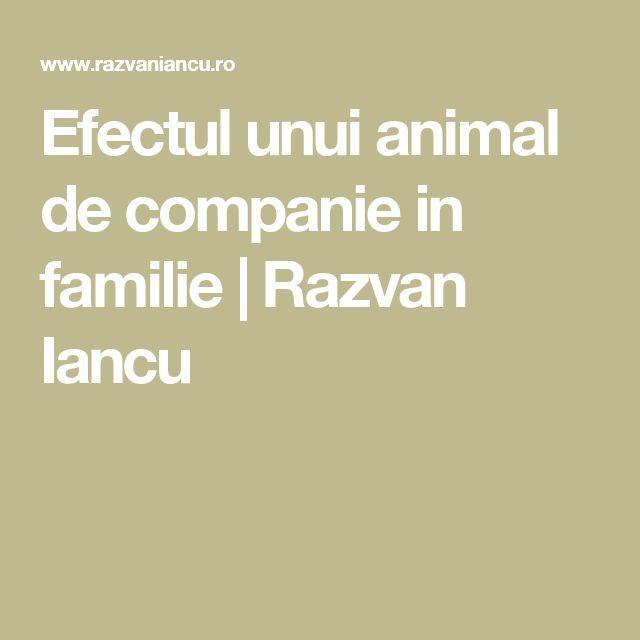 Efectul unui animal de companie in familie   Razvan Iancu