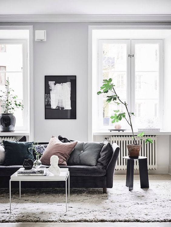 Living Room With A Black Leather Sofa And A Plant With Big Leaves