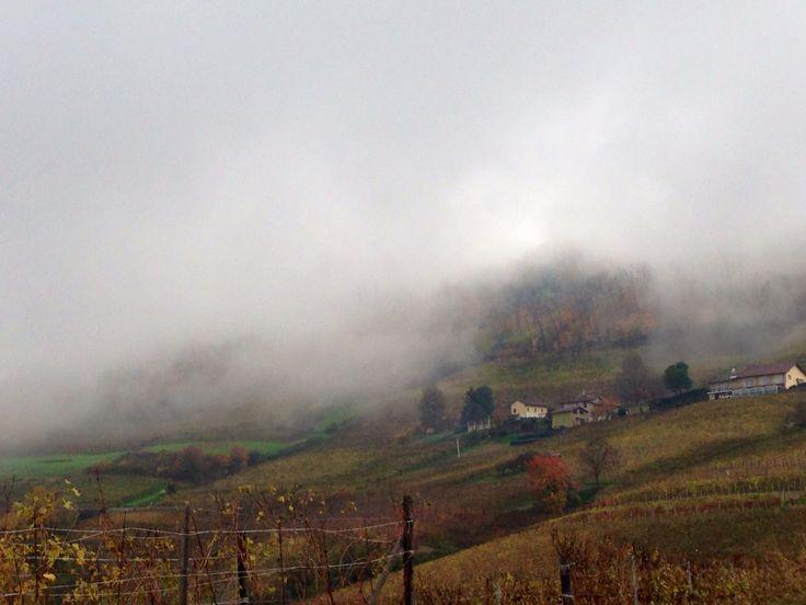 #autumn #lamorra #langhe #unesco #hill