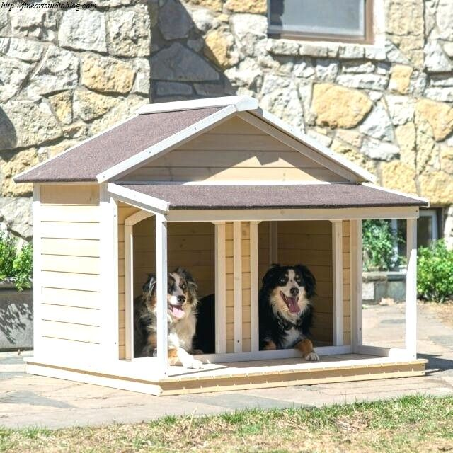 38 Shocking Double Dog House Plans With Porch Plan