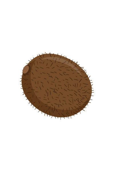 Kiwi Vector #kiwi #vector #fruits #handdrawvector http://www.vectorvice.com/fruits-vector