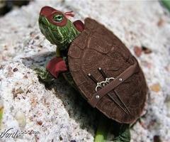 a baby........ ninja turtle