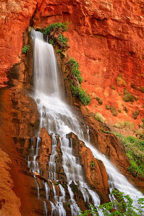 Vasey's Paradise Waterfall ~ is one of the waterfall and scenic wonders that are accessible only by rafting the Grand Canyon, located in the Grand Canyon National Park, Arizona