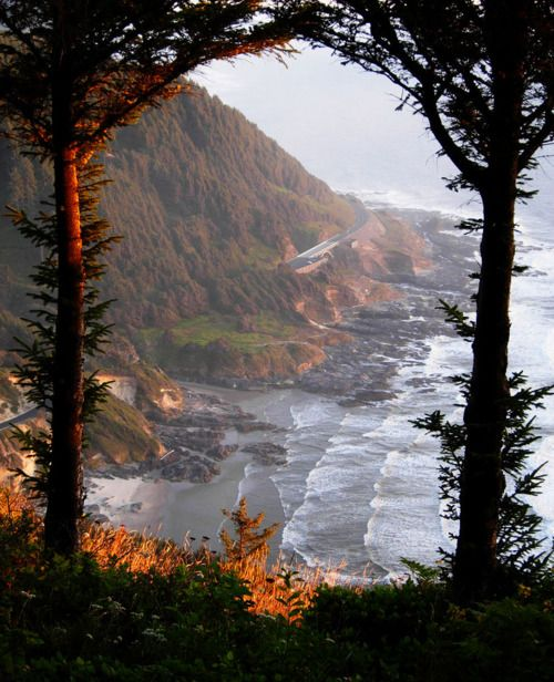 The Oregon Coast at sunset seen from the St. Perpetua trail. The