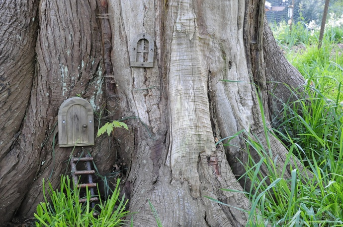 Belvedere biaise doors on a tree gnome crush for Gnome doors for trees