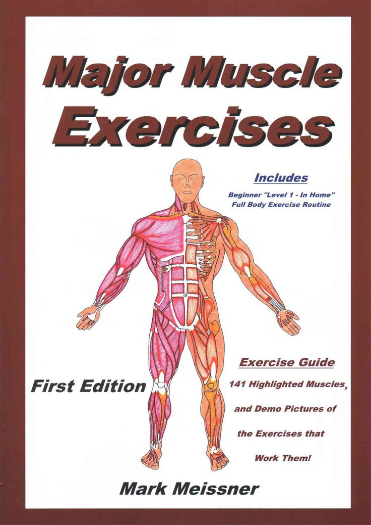 Major Muscle Exercises: A Pictorial Exercise Reference Guide: Highlighted Major Muscles of the Body and the Exerc...