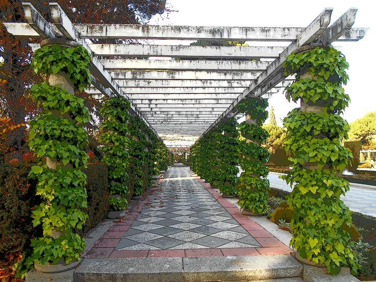 Galer a de columnas decorada a base de hiedra jardines de for Jardines cecilio rodriguez