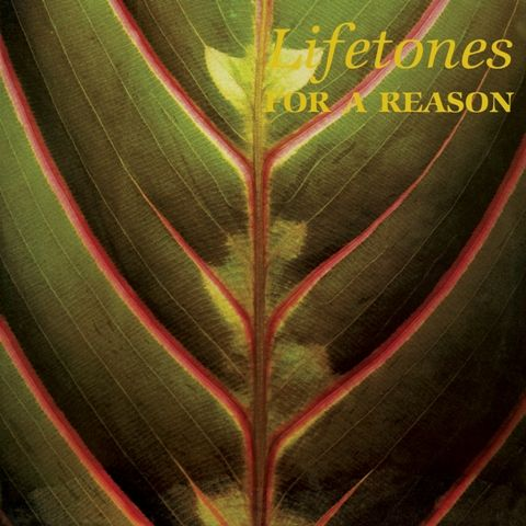 Lifetones ‎– For A Reason (Light In The Attic) 1983