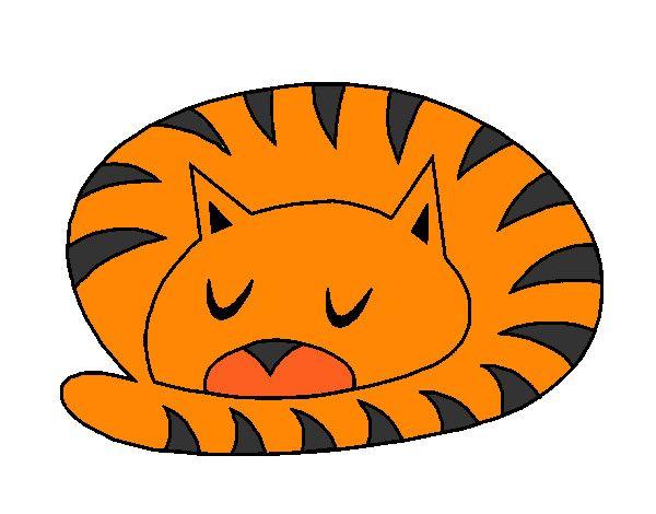 gato perezoso gif - Buscar con Google