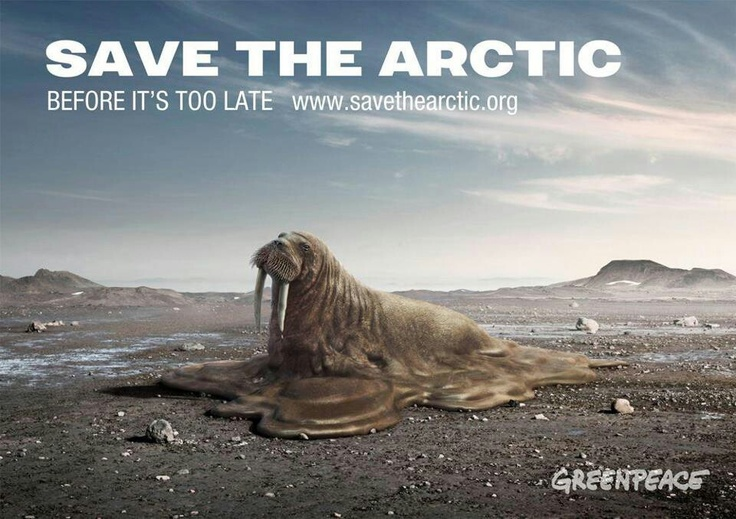 A gripping and poignant portrayal of a walrus melting. It allows us to see just how much the arctic is being affected by connecting us with the wildlife. The hierarchy is strong and the message is clear.