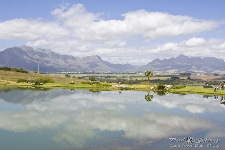 Asara wine farm in Stellenbosh - Cape Town. This place is amazing.