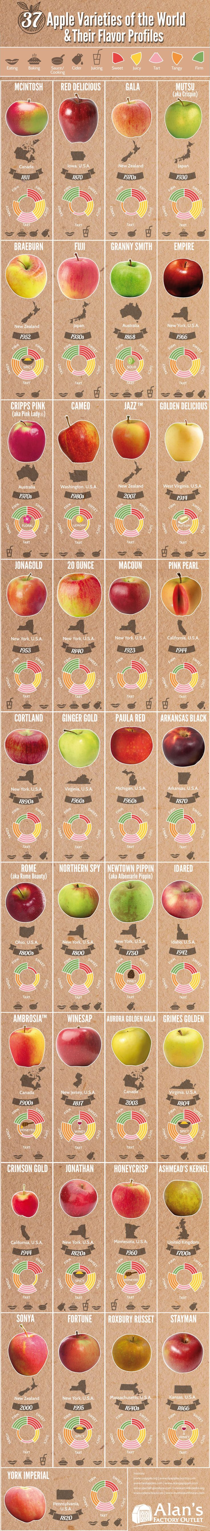 37 apple varieties from around the world and what they taste like. - Imgur