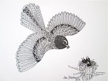 "Jan Fitzgerald describes her native New Zealand birds using traditional Maori patterns for their plumage. I love the way she informs me with her drawings""Fantail mother"" - ORIGINAL by Jan FitzGerald"