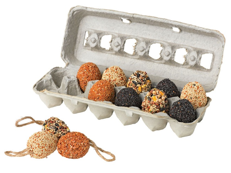 Bird Seed Eggs to decorate outside Christmas tree