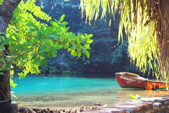 """""""How To Visit: Portland, Jamaica"""" by Travel Noire"""