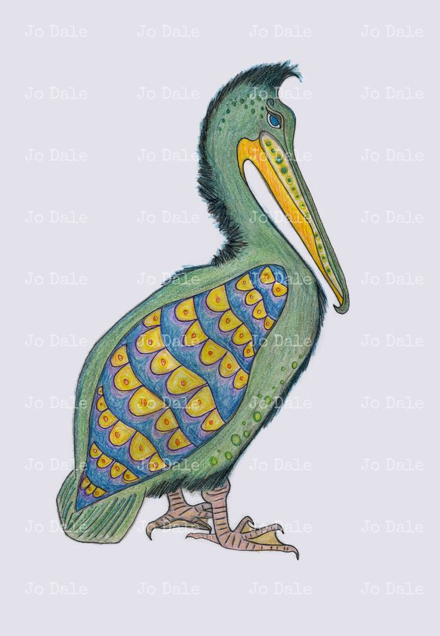 Trudy the Pelican who likes to do the Fandango - signed print £10.00