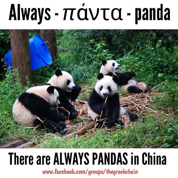 There are ALWAYS PANDAs in China - #GreekMnemonic, The Greek Chain, #Greekword, #GreekLanguage