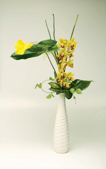 Clean look of mini yellow cymbidium orchid, yellow mini calla, anthurium leaves and horse tail in high long and narrow ceramic vase