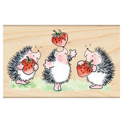 Margaret Sherry - Ouriço do Mato (Strawberry Jam)