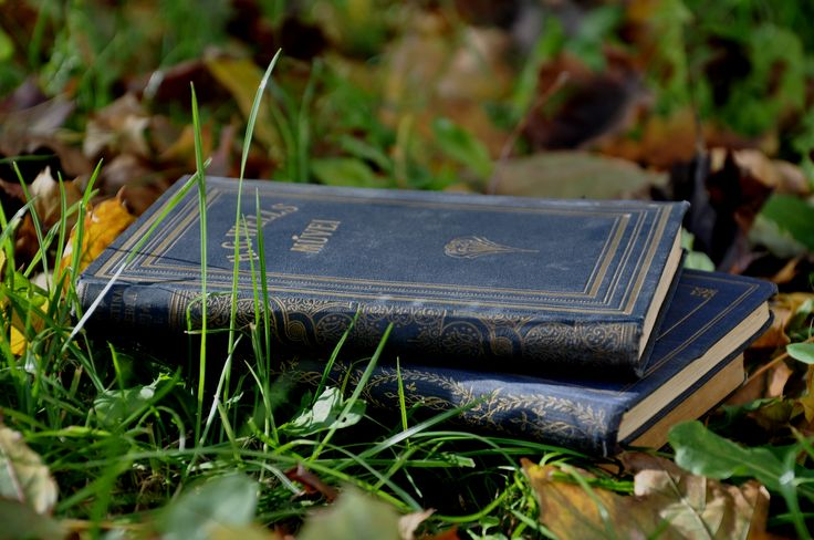 H.G.Wells. Books. Autumn. Sunshine. Könyvek napsütésben.
