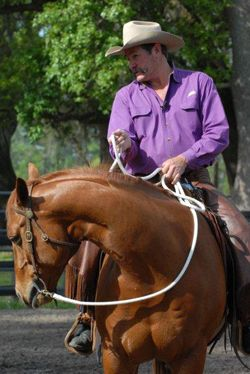 Horse Training Tips – How to Ride Like a Leader :: Lateral Flexion Teach your horse to bend