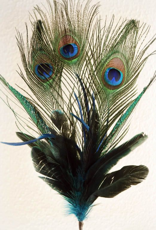 1000 images about the birds by save on crafts on for Synthetic feathers for crafts