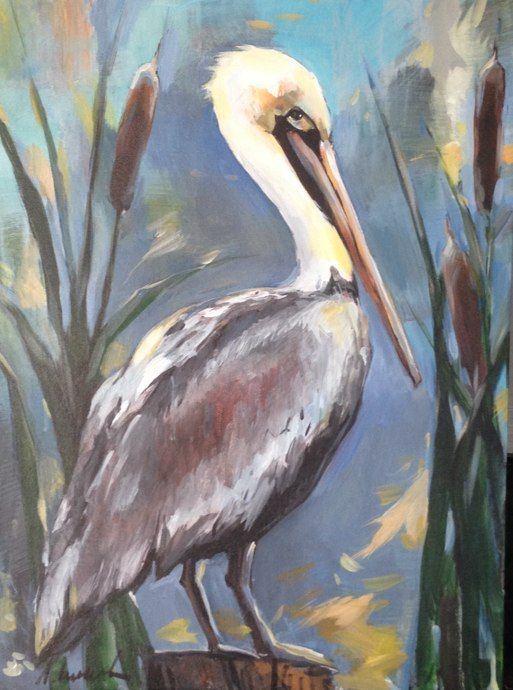 Brown pelican by Anya Lincoln-Dunn