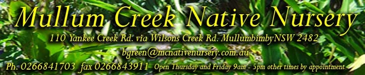 mullum creek native nursery homepage