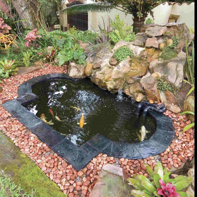 Diy koi pond i 39 ve always wanted to make one koi pond for Koi fish pond ideas