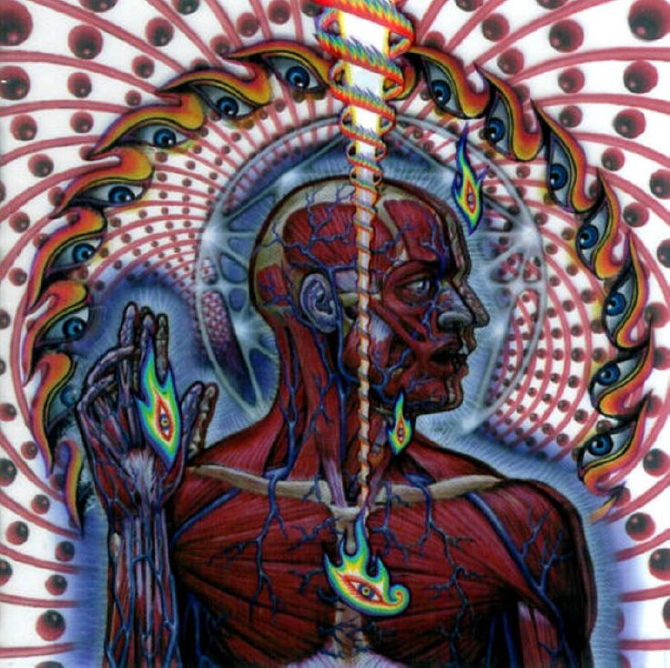 So Vicarious: 1000+ Images About TooL On Pinterest
