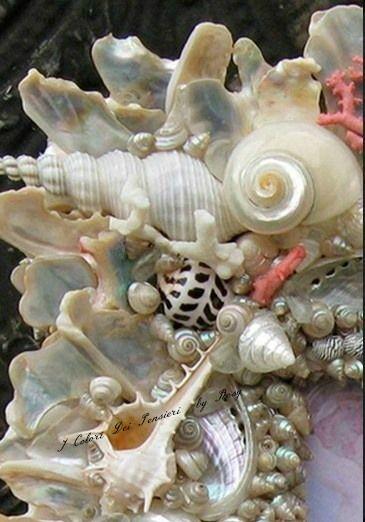 .same color shells