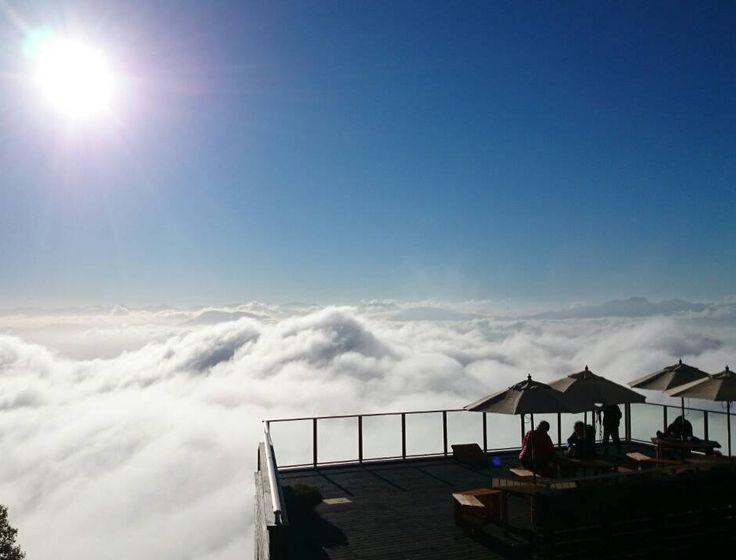 (2枚目の画像)雲海に包まれた天空カフェ「SORA terrace」が別世界!神様に出逢えそう… - Find Travel