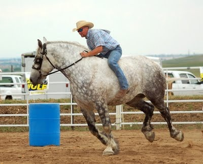 Ha! Draft horse barrel racing- I love it!  see comments for link to more racing : )