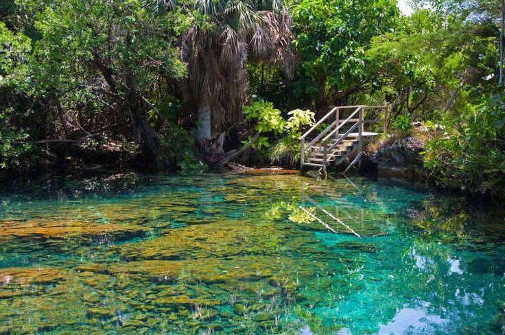 Turismo ecosostenibile? La Repubblica Dominicana è la vostra destinazione. Lambita dall'Oceano Atlantico a nord e dal Mar dei Caraibi a sud, attraversata in lungo e in largo da fiumi e laghi, coperta da foreste...